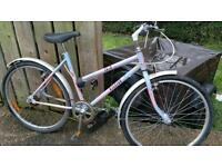 RALEIGH COCO mountain bike for sale