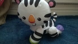 Learn to crawl tiger cub