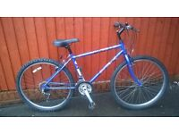 Raleigh IMIA Youth or Mans Mountain Bike ...Super Value ..£46.00..Rides Well..Located in Bridgend