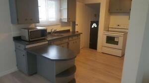 $1400/MONTH ALL INCLUSIVE |Upper Level Bungalow| STIRLING AVE S Kitchener / Waterloo Kitchener Area image 2