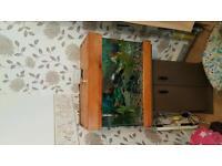 Fish tank +oscar