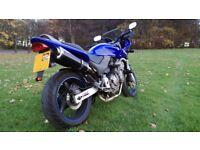 Honda CB600 Hornet 2002- Low Mileage - Exceptional motorbike running superb- MOT until October 2018