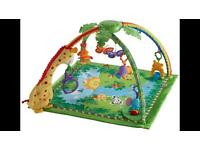 Fisher price rainforest playgym