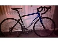 Giant SCR 2 Road Bike /specialized components, VGC