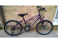 """Boys /Girls 20"""" Bike"""