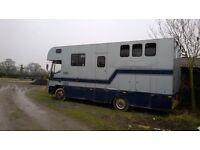 Iveco HGV 11 ton Horsebox