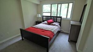 Large 1 Bedroom Apartment in Kitchener - ALL UTILITIES INCL.! Kitchener / Waterloo Kitchener Area image 5