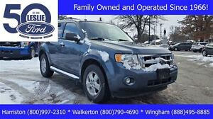 2012 Ford Escape XLT 4WD | Accident Free | Bluetooth