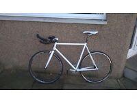 Fixie / Track Bike / TT bike for sale
