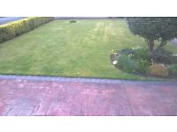 NUNTHORPE LAWN MOWER AND GRASS CUTTING AND TREE SERVICE, ALSO BRIGGS AND STRATTON SPARES