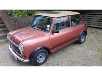 Austin Mini 1100 Special, 1979 For Sale
