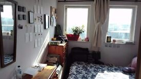 Double bedroom up for rent, £265 per month