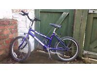 Raleigh Max purple 'junior' bike