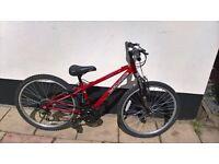 "Mountain bike size 24"" wheels"