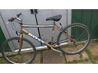 British eacle bike