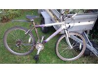 Concept Ridge mens mountain bike