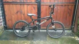 X rated bmx 8 ball bike