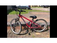 Apollo xc24 mountain bike