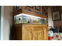 5ft (300L) TROPICAL TANK COMPLETE WITH EXTERNAL FILTER