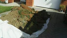 Top soil, free to a good home!