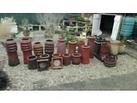 Chimney pots for the garden