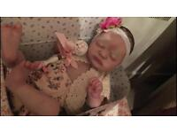 Americus by LLE Reborn Doll