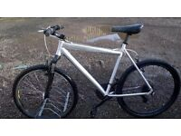 adult unisex REBOK FULL ALUMINIUM MOUNTAIN BIKE 22 IN FRAME 24 SPEED plus hat /road lights