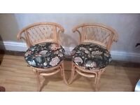 TWO LOVELY CANE STYLE CHAIRS WITH THICK PADDED CUSHIONS