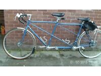 bike long two seater great for touring in blue nice condition