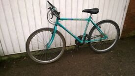 Raleigh Ascender 15 Speed cycle for sale