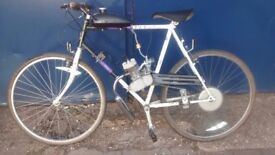 MANS BIKE FITTED WITH 60CC PETROL ENGINE