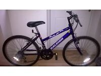 girls Raleigh max bike age 9-12