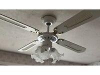 Ceiling fan lights - £10 each