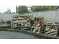 Bonfire / fire wood pallets