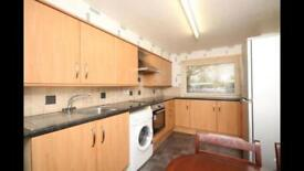 Bright room in spacious 3 bed flat bills inc.
