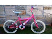 "Raleigh Roxy Girl""s bicycle"