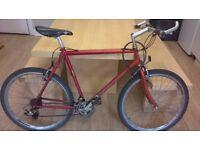 Bike, Mountain Bike