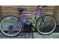 LIKE NEW APOLLO MOUNTAIN BIKE ONLY £55.