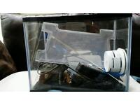 Starter fish tank and accessories.