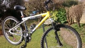 Used Mountain bike, GT Agressor, nice bike, ideal for some Fun