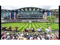 Royal ascot Queen Anne Enclosure tickets for tues 19th