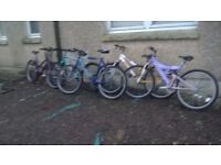 MOUNTAIN BIKES ADULT LADIES AND GENTS ALL GOOD CONDITION £35 EACH