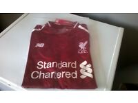 New 2018/19 Liverpool Football Shirt, Adult sizes