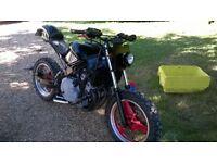 cnr600 mutt bike streetfighter survival