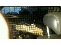 Mk1 focus estate factory dog guard