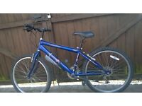 age 9/12 mountain bike,
