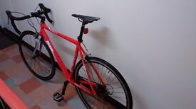 Road Bicycle, Carbon Fork, Shimano 16 speed STI