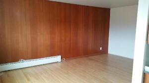 One Bedroom Apartment for Rent - 355 St. Anne's Road