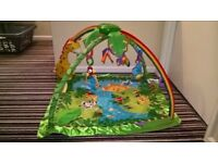 Fisher Price Rainforest Jungle Gym