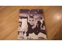 picture Audrey Hepburn
